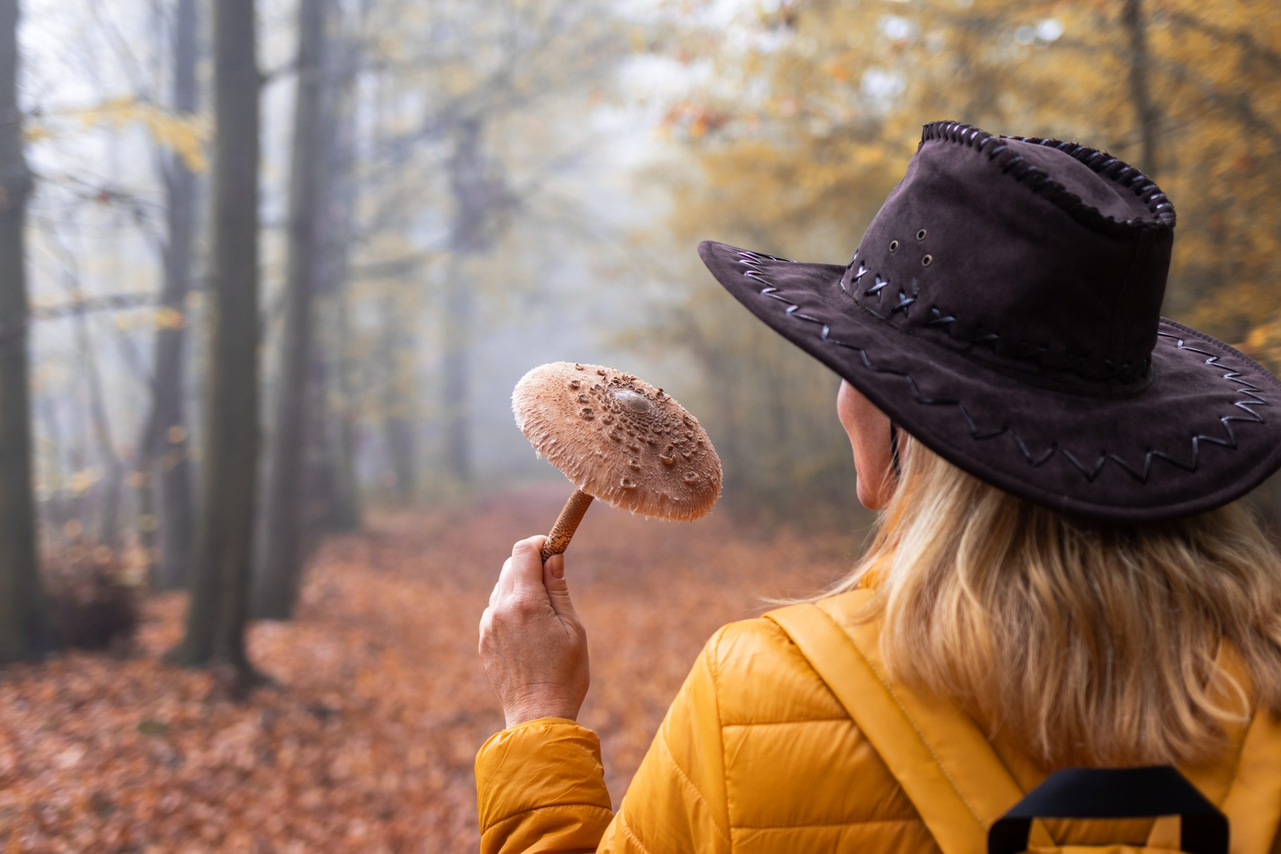 Woman holding a wild mushroom in the forest