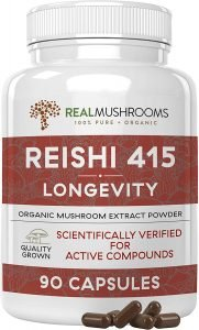 The 5 Best Mushroom Extracts for Cognitive Performance 11